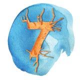 Siedem 7 - akwarela, penball ręki rysunkowa ilustracja Kolorowy obraz dla witać, rocznica, urodzinowe karty, plakaty, p royalty ilustracja