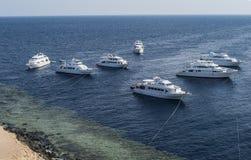 Siedem cumowali nurka ` s jachty w Czerwonym morzu, Egipt Białe łodzie na zmroku - błękit z gree dennym spojrzeniem wielkim dla a zdjęcia royalty free
