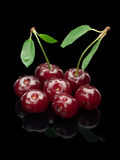 Siedem jagod wiśnia na zielonym małym badylu Zdjęcia Stock