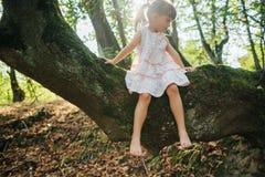 siedzący dziewczyny drzewo stopa Mech zdjęcia royalty free