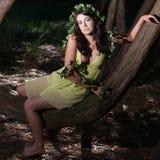 siedzący boginki drzewo Zdjęcie Stock
