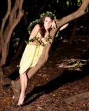 siedzący boginki drzewo Zdjęcie Royalty Free