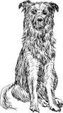 Siedzący pies Zdjęcia Royalty Free