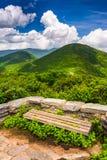Siedzi i widok Appalachians od Craggy pinakla zdjęcie royalty free