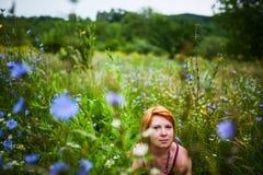 Siedzieć w wildflowers polu Zdjęcia Stock