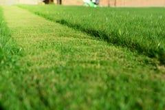 Siega del césped Una perspectiva de la tira del corte de la hierba verde imagen de archivo libre de regalías