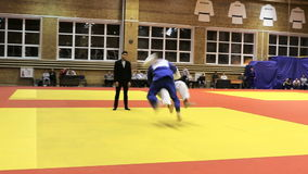 Siegathlet judoka in Konkurrenz Ippon stock video