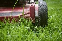 Siegue el ángulo bajo del césped de la hierba del corte del cortacésped fotografía de archivo