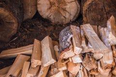 Siekający drewno, łupka zbierająca dla zimy Obraz Royalty Free