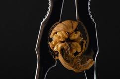 Siekający orzech włoski w dziadku do orzechów Czarny tło fotografia stock