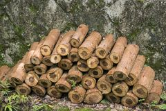 siekający pożarniczego stosu przygotowany zima drewno obraz royalty free