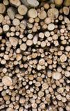 Siekający drewno obraz stock