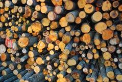 siekający ogienia stosu drewno Zdjęcia Stock
