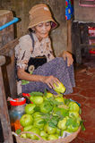 Siem oogst voedselmarkt, Kambodja 5 september, 2015 Royalty-vrije Stock Foto's