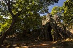 Siem Przeprowadza żniwa Angkor Wat Angkor Thom Zachodnią bramę obraz stock