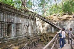 Siem Przeprowadza żniwa, Kambodża, Dec - 03 2016: Beng Mealea sławny Histori Obraz Stock