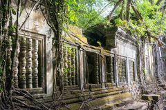 Siem Przeprowadza żniwa, Kambodża, Dec - 03 2016: Beng Mealea sławny Histori Zdjęcia Royalty Free