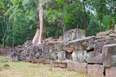 Siem Przeprowadza żniwa, Kambodża, Dec - 13 2016: Krol Ko w Angkor sławny h Zdjęcie Royalty Free