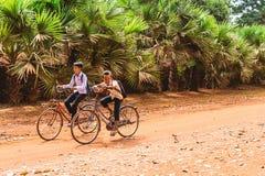 Siem Przeprowadza żniwa, Kambodża, Grudzień - 6, 2016: Dzieci Fotografia Stock