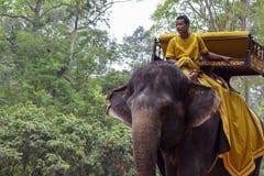 Siem Przeprowadza żniwa, Kambodża - 28 Marzec 2018: Młody człowiek w tradycyjnych kolorów żółtych ubraniach jedzie dużego słonia Zdjęcie Royalty Free