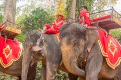 SIEM PRZEPROWADZAJĄ ŻNIWA, Feb 24, 2015: Niezidentyfikowany kambodżański w nat Obrazy Royalty Free