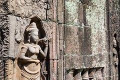 Siem Reap, Камбоджа - 11-ое декабря 2016: Сброс на соме животиков в Angkor A Стоковая Фотография RF