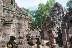 Siem Reap, Камбоджа - 11-ое декабря 2016: Сом животиков в Angkor известная высокая Стоковые Изображения RF