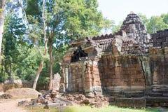 Siem Reap, Камбоджа - 11-ое декабря 2016: Сом животиков в Angkor известная высокая Стоковые Фотографии RF