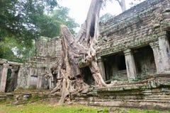 Siem Reap, Камбоджа - 13-ое декабря 2016: Preah Khan в Angkor famou Стоковые Изображения RF