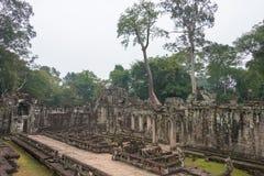 Siem Reap, Камбоджа - 13-ое декабря 2016: Preah Khan в Angkor famou Стоковые Фото