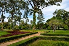 Siem Reap Fotos de Stock Royalty Free