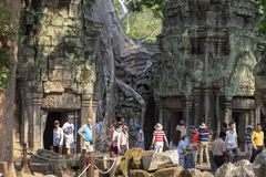 Siem Reap, Cambodia - 25 March 2018: tourists in ancient temple of Angkor Wat complex. Temple ruin with tree. Popular tourism destination place. Travel and Stock Photography