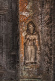 SIEM REAP, CAMBODIA. Stone carving Apsara in Ta Prohm temple. Royalty Free Stock Photography
