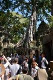 Siem Reap, Camboya - 3 de diciembre de 2015: Templo de la visita TA Prohm de los turistas en Angkor, Siem Reap Imagen de archivo libre de regalías
