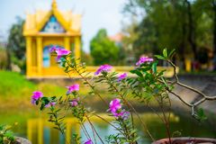 Siemreap,Cambodia.A small Golden temple by the lake. A beautiful old temple in the city Siemreap,Cambodia royalty free stock photography