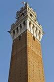Siena的在光和树荫的Mangia塔 免版税库存图片