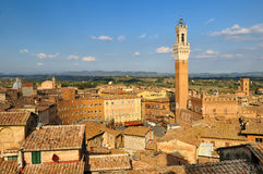 Siena都市风景  库存照片