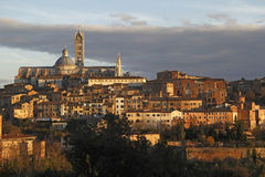 Siena. View of Siena in sunset time Stock Image