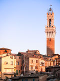 Siena Stock Photos