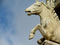 Siena Stockfotografie