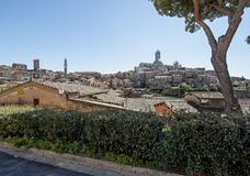 Siena Arkivfoton