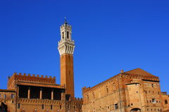 Siena architecture Royalty Free Stock Images