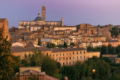 Siena Cathedral (duomo) Royalty Free Stock Photography
