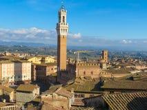 Siena, centrum miasta Fotografia Royalty Free