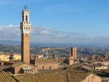 Siena, city centre Royalty Free Stock Images