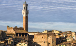 Siena Royalty Free Stock Photography