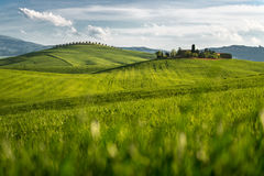 Siena, d'Orcia de Val, Toscana Fotografía de archivo