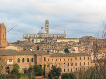 Siena domkyrka Royaltyfri Bild