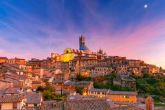 Siena Domkyrka på solnedgången royaltyfria foton