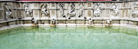 Siena Fountain of Joy Royalty Free Stock Photography